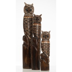Set of Large Owls