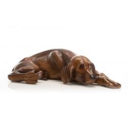 Small Lazy Dog