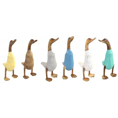 Solid wooden duck with painted body and plain wood head and legs in six different colours