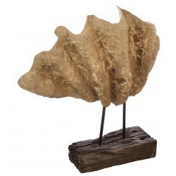 Decorative Clam Shell made from resin on a block stand