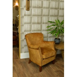 Gold Velvet small armchair with a solid wood frame under the soft velvet upholstery