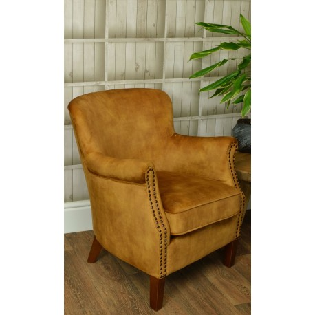 Small armchair covered in soft velvet in and gold colour on a solid wood frame